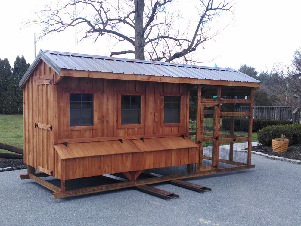 6x10 with a 6ft run Chicken Coop
