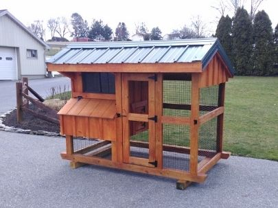 amish built small chicken coop in lancaster county pa